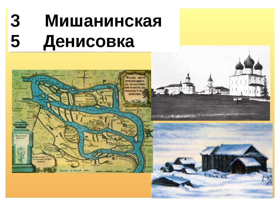 Мишанинская 5 Денисовка