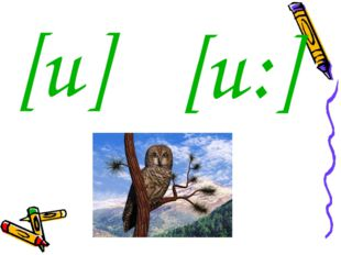 [u ] [u: ]