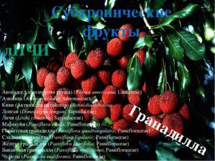 Тропические фрукты Платония(Platonia insignis;Clusiaceae) Lemon Drop Mangos