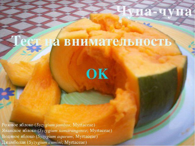 The END Автор:Кирилл Поставщик:Кирилл Программист:Кирилл