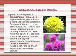 Национальный цветок Мексики. Георгин - у этого цветка 2 официальных названия.