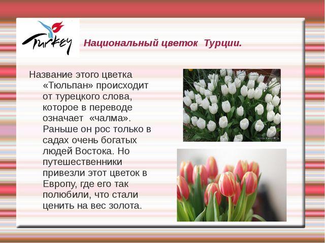 Национальный цветок Турции. Название этого цветка «Тюльпан» происходит от тур...