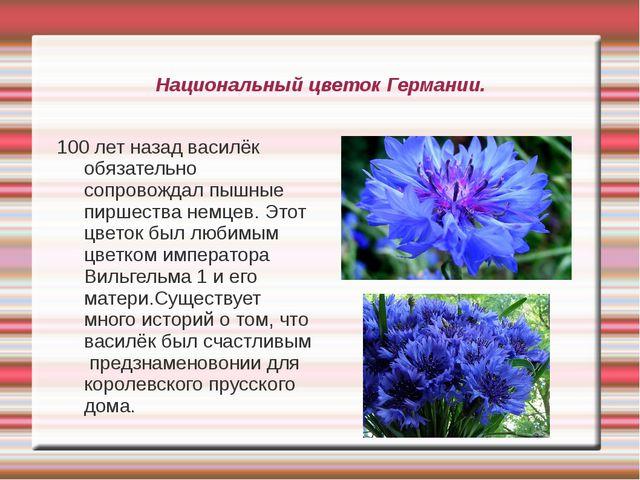 Национальный цветок Германии. 100 лет назад василёк обязательно сопровождал п...