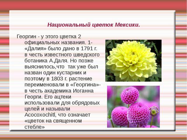 Национальный цветок Мексики. Георгин - у этого цветка 2 официальных названия....