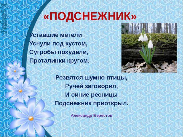 «ПОДСНЕЖНИК» Уставшие метели Уснули под кустом, Сугробы похудели, Проталинки...
