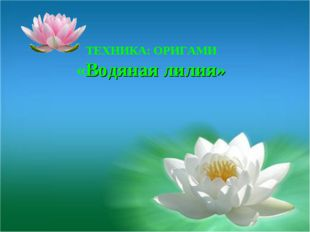 ТЕХНИКА: ОРИГАМИ «Водяная лилия»