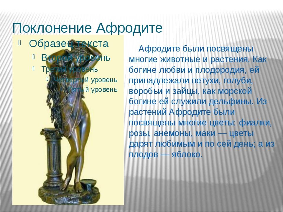 Поклонение Афродите Афродите были посвящены многие животные и растения. Как б...