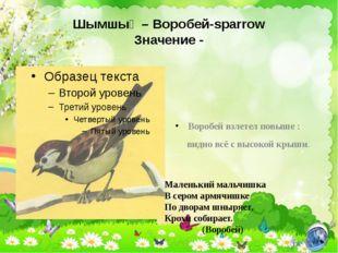 Шымшық – Воробей-sparrow Значение - Воробей взлетел повыше : видно всё с высо