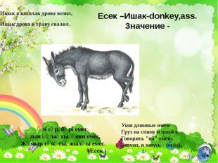 Есек –Ишак-donkey,ass. Значение - Ишак в кишлак дрова возил, Ишак дрова в тра