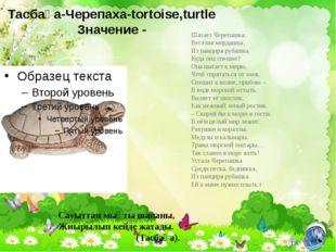 Тасбақа-Черепаха-tortoise,turtle Значение - Шагает Черепашка: Весёлая мордашк