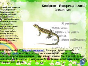 Кесіртке –Ящерица-lizard. Значение - Я зеленая малышка, И проворна даже слишк