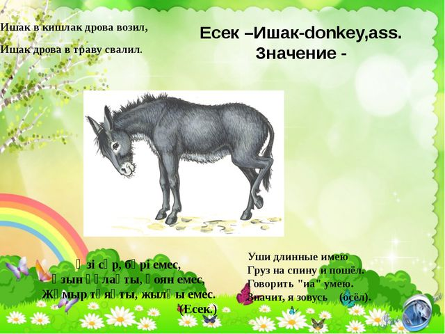 Есек –Ишак-donkey,ass. Значение - Ишак в кишлак дрова возил, Ишак дрова в тра...