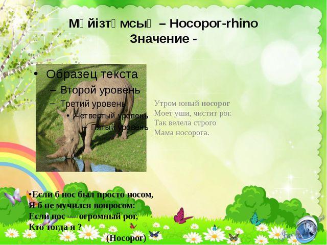 Мүйізтұмсық – Носорог-rhino Значение - Утром юный носорог Моет уши, чистит ро...