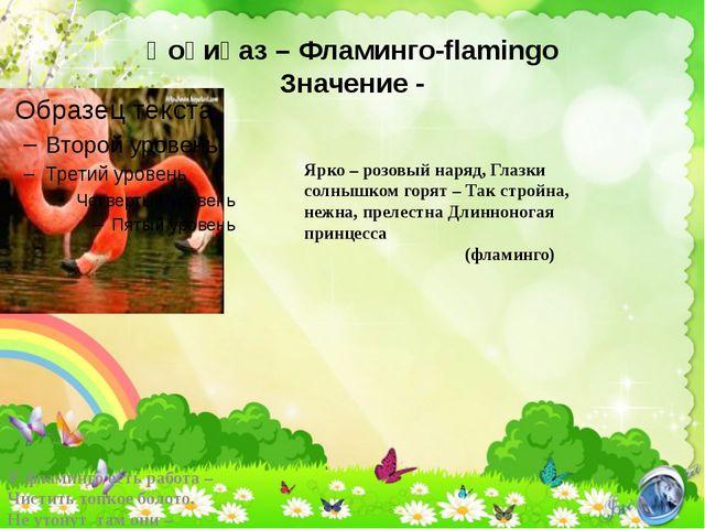 Қоқиқаз – Фламинго-flamingo Значение - У фламинго есть работа – Чистить топко...