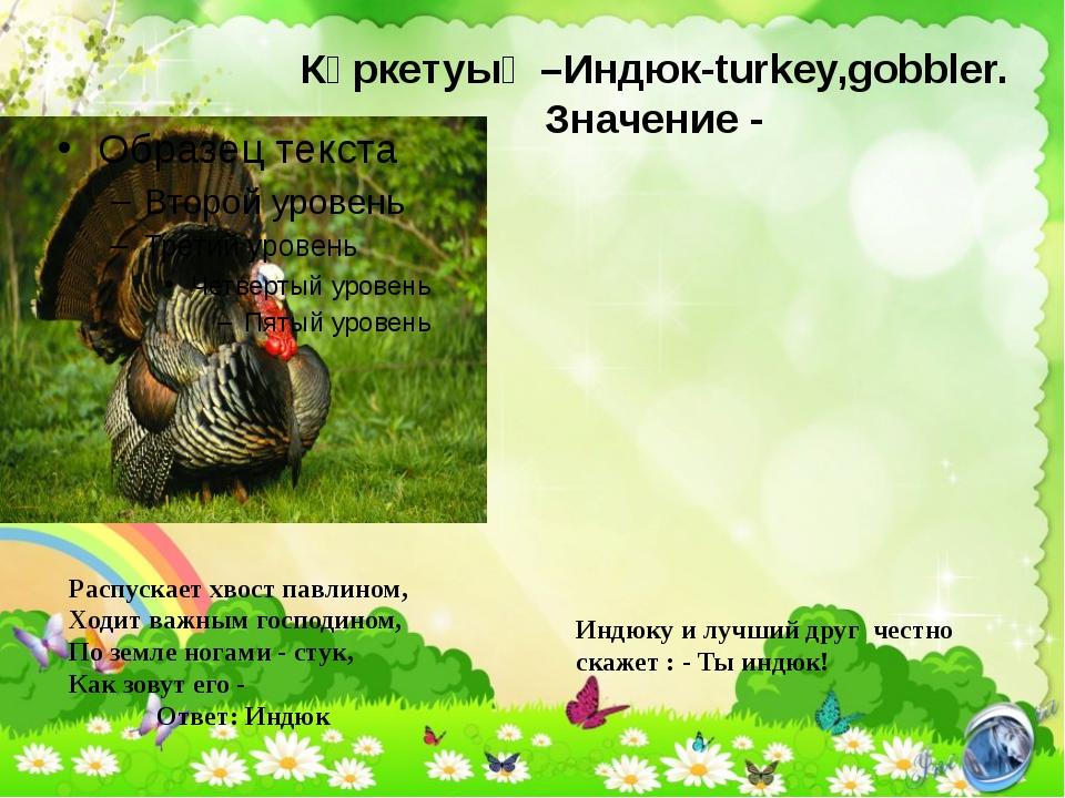 Күркетуық –Индюк-turkey,gobbler. Значение - Индюку и лучший друг честно скаже...