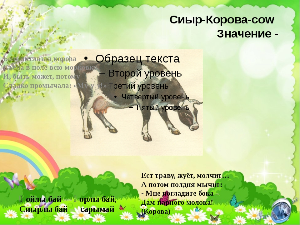 Сиыр-Корова-cow Значение - Қойлы бай — қорлы бай, Сиырлы бай — сарымай Больше...