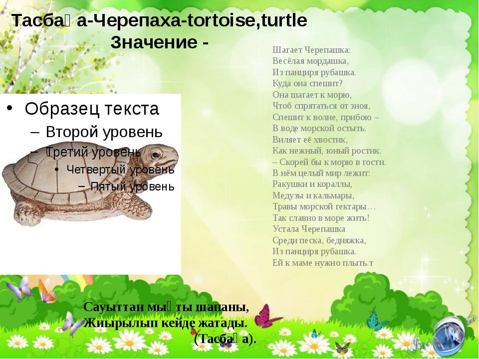 Тасбақа-Черепаха-tortoise,turtle Значение - Шагает Черепашка: Весёлая мордашк...
