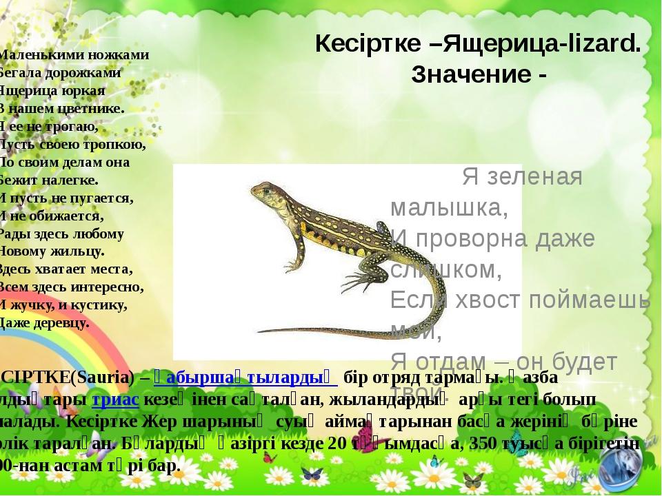 Кесіртке –Ящерица-lizard. Значение - Я зеленая малышка, И проворна даже слишк...