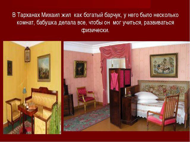 В Тарханах Михаил жил как богатый барчук, у него было несколько комнат, бабуш...
