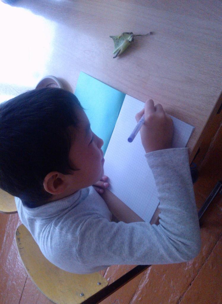 D:\Documents and Settings\User\Мои документы\Мои рисунки\С проигрывателя NOKIA Lumia 610\Альбом камеры\WP_006224.jpg