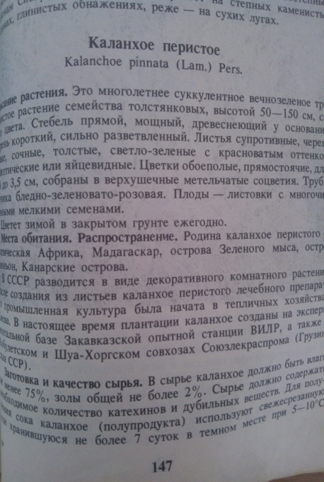 D:\Documents and Settings\User\Мои документы\Мои рисунки\С проигрывателя NOKIA Lumia 610\Альбом камеры\WP_006639.jpg