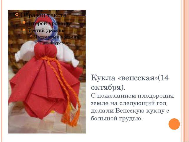 Кукла «вепсская»(14 октября). С пожеланием плодородия земле на следующий год...