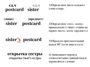 1)Определяем число каждого слова в паре. 2)Определяем «что» «кому» принадлежи