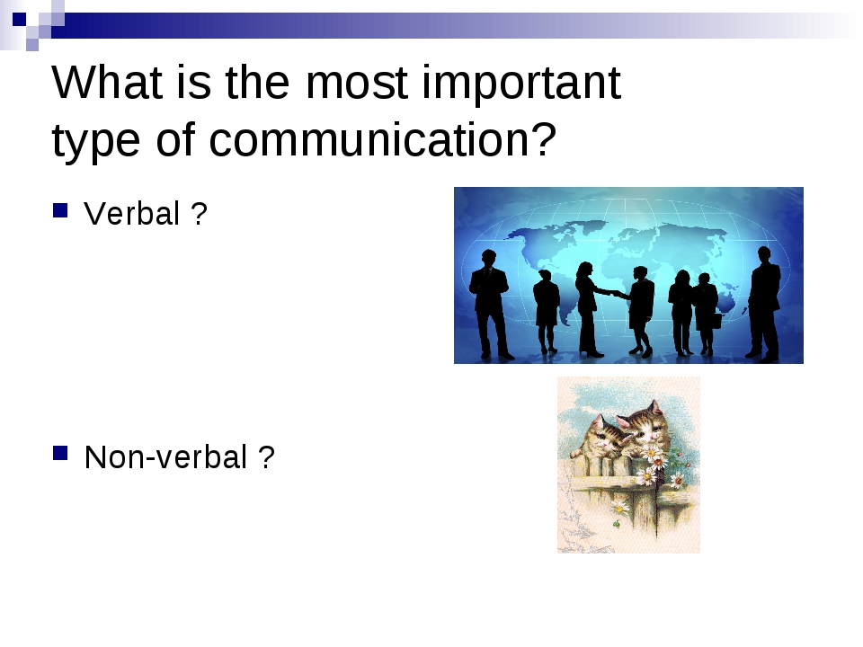 was communication the most important factor Some experts say that effective communication is the most important factor in successfully leading change do you agree, and can you cite examples that support your view tutorials for this question available for $400 some experts say that effective communication is the most important factor.