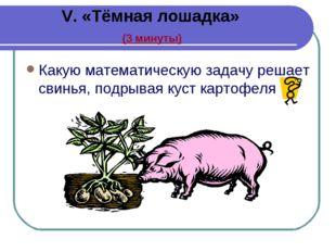 V. «Тёмная лошадка» (3 минуты) Какую математическую задачу решает свинья, по