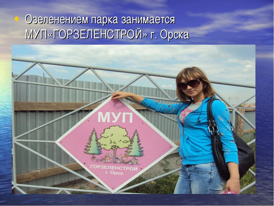 Озеленением парка занимается МУП«ГОРЗЕЛЕНСТРОЙ» г. Орска