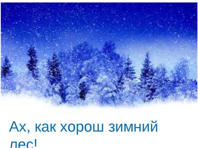 Ах, как хорош зимний лес!