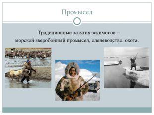 Промысел Традиционные занятия эскимосов – морской зверобойный промысел, олен