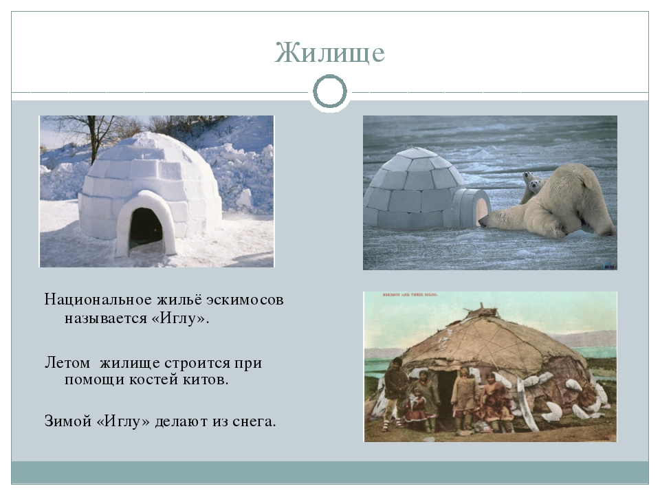 Жилище Национальное жильё эскимосов называется «Иглу». Летом жилище строится...