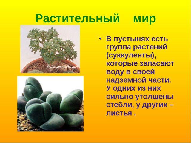 Растительный мир В пустынях есть группа растений (суккуленты), которые запаса...