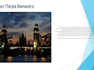 Мост Петра Великого Также в Питере полно пусть и не рекордно длинных или шир
