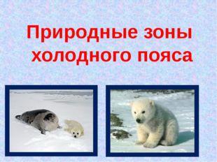 Природные зоны холодного пояса