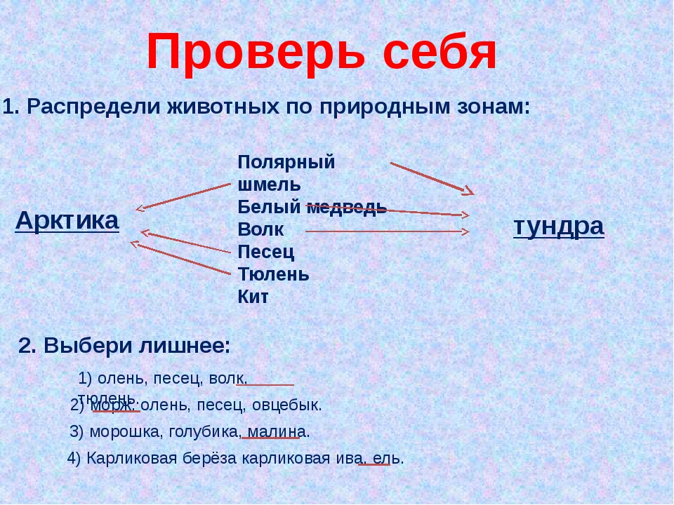 Проверь себя 1. Распредели животных по природным зонам: Полярный шмель Белый...