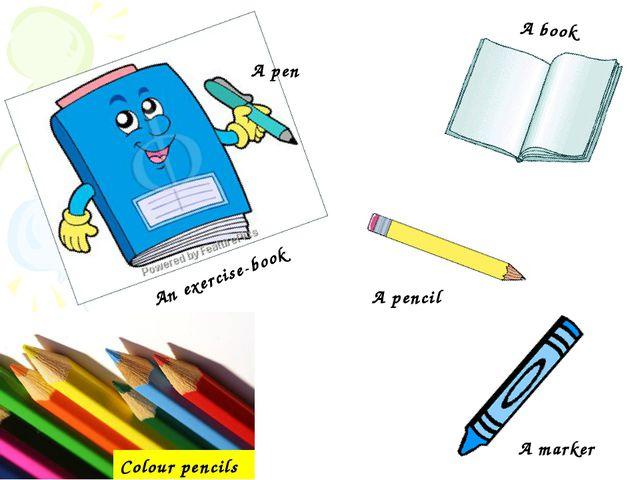 Colour pencils A book An exercise-book A pen A pencil A marker