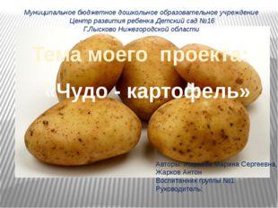 «Чудо - картофель» Тема моего проекта: Муниципальное бюджетное дошкольное об
