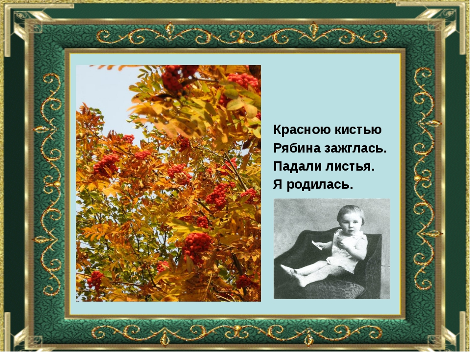 Красною кистью Рябина зажглась. Падали листья. Я родилась.