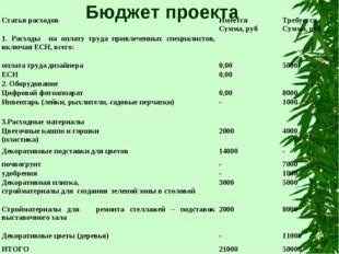Бюджет проекта Статья расходовИмеется Сумма, рубТребуется Сумма, руб 1. Рас
