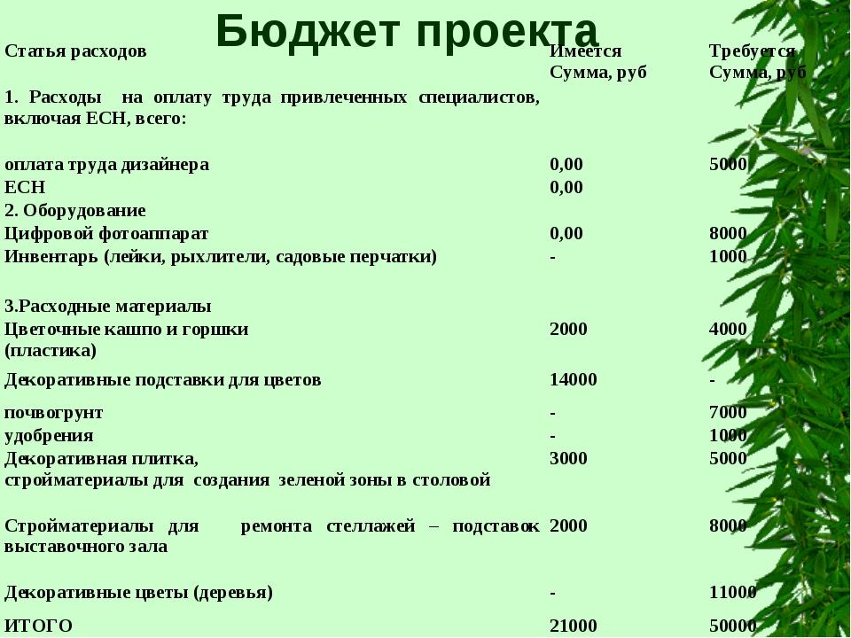 Бюджет проекта Статья расходовИмеется Сумма, рубТребуется Сумма, руб 1. Рас...