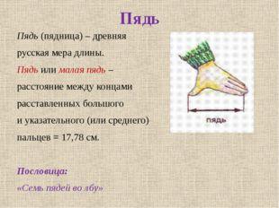 Пядь Пядь (пядница) – древняя русская мера длины. Пядь или малая пядь – расст