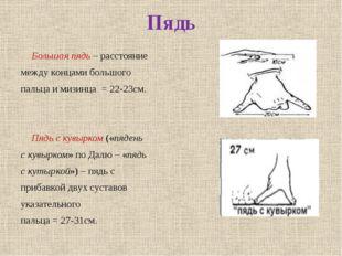 Пядь Большая пядь – расстояние между концами большого пальца и мизинца = 22-