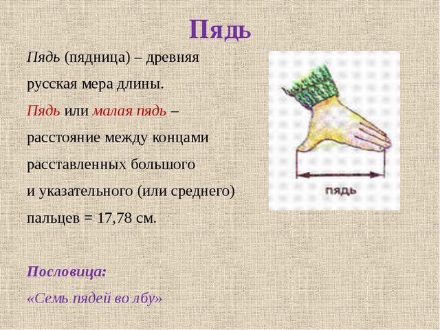 Пядь Пядь (пядница) – древняя русская мера длины. Пядь или малая пядь – расст...