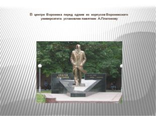 В центре Воронежа перед одним из корпусов Воронежского университета установле
