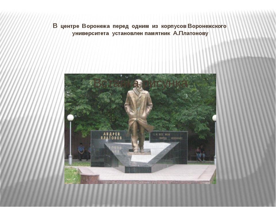 В центре Воронежа перед одним из корпусов Воронежского университета установле...