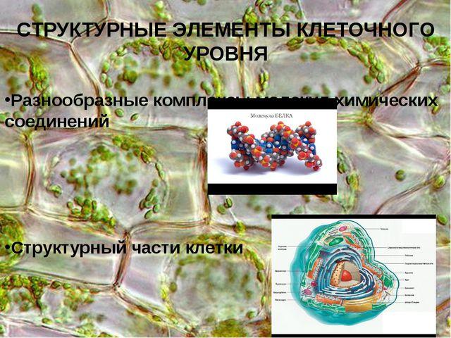 СТРУКТУРНЫЕ ЭЛЕМЕНТЫ КЛЕТОЧНОГО УРОВНЯ Разнообразные комплексы молекул химиче...