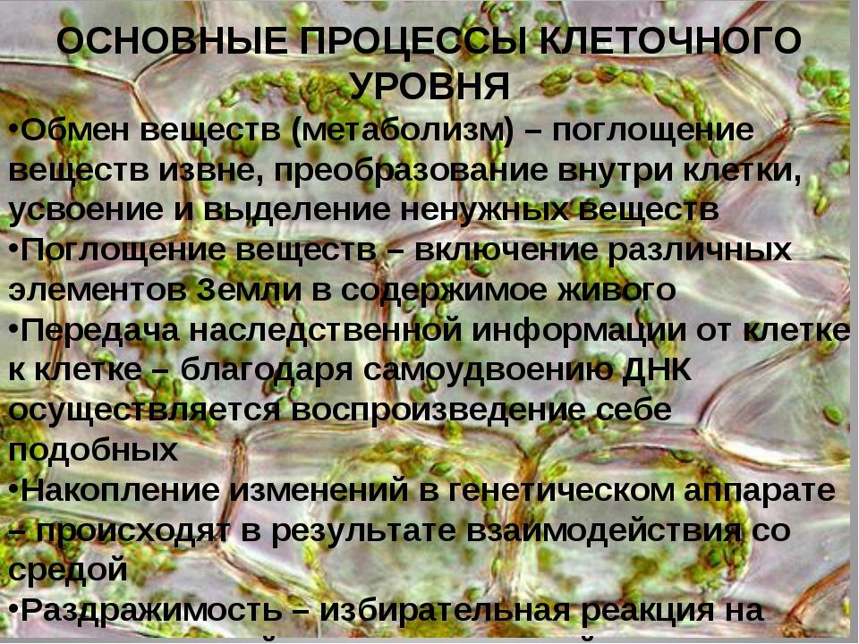 ОСНОВНЫЕ ПРОЦЕССЫ КЛЕТОЧНОГО УРОВНЯ Обмен веществ (метаболизм) – поглощение в...