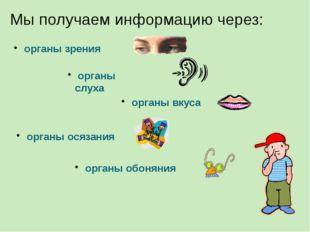 Мы получаем информацию через: органы зрения органы слуха органы вкуса органы